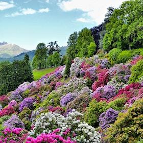 La valle incantata – un itinerario nel verde