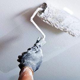 Pitture antimuffa naturali per prevenire la muffa in casa
