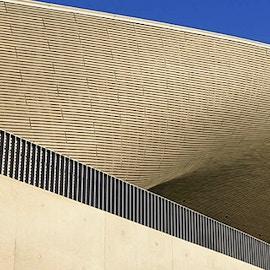 Aquatics Centre di Londra: la piscina olimpica firmata Zaha Hadid