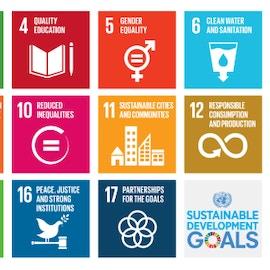 Obiettivi di sviluppo sostenibile: i 17 obiettivi dell'agenda 2030