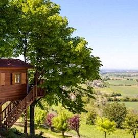 Case sull'albero in Italia: i 10 migliori hotel
